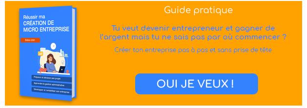 ebook créer et réussir sa micro entreprise