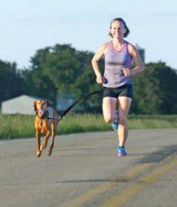 gagner argent sport running petsitter