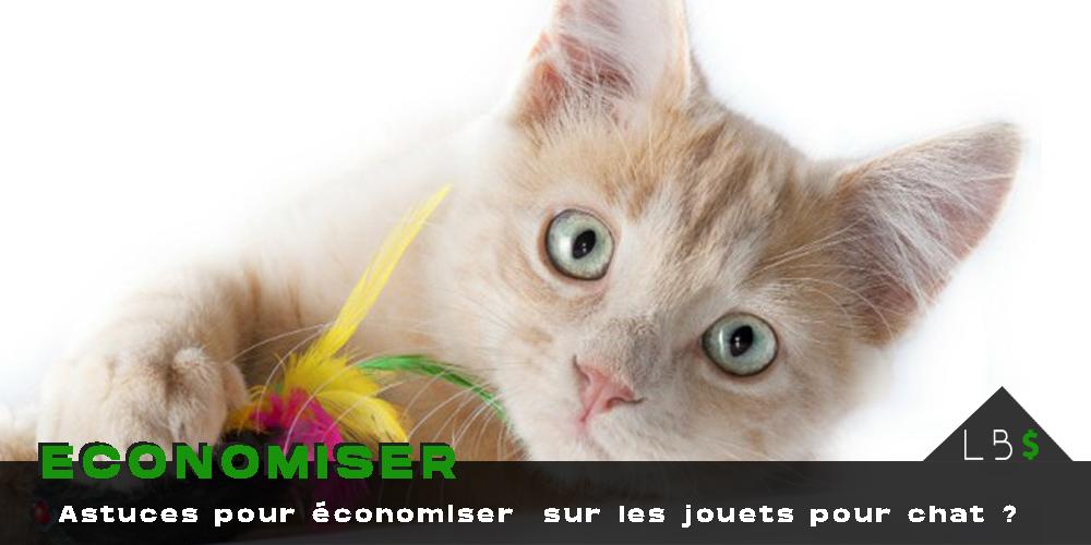 économiser argent fabriquer jouet chat